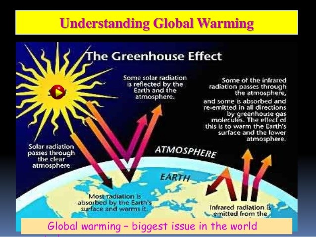 an introduction to the issue of the greenhouse effect The greenhouse effect actually is a bit their concerns are shared by other scientists who are troubled that the issue of global warming seems driven more by.
